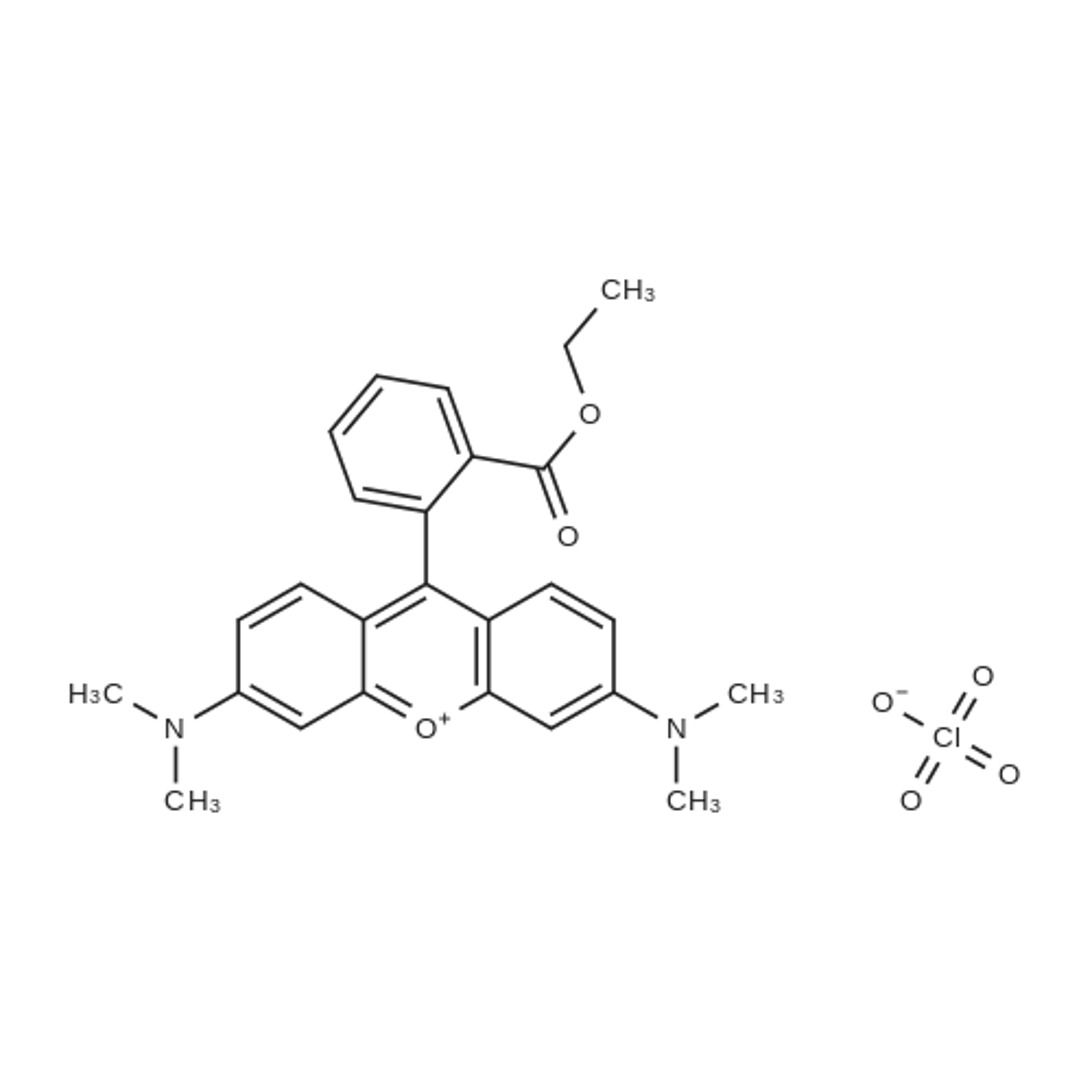 Tetramethylrhodamine Ethyl Ester Perchlorate